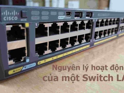 Nguyên lý hoạt động của Switch?